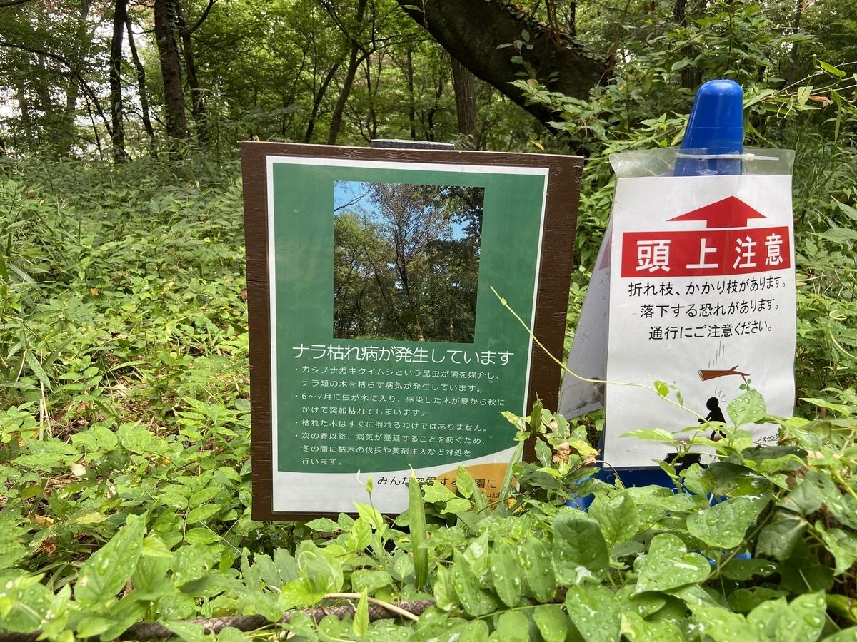 f:id:u-tsu-ro-i:20210807191157j:plain