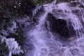 『京都新聞写真コンテスト 琴滝の氷柱 』