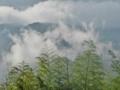 京都新聞写真コンテスト 蓬莱山麓梅雨来る