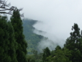 京都新聞写真コンテスト 雲海の上