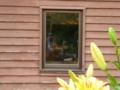京都新聞写真コンテスト 窓の中誰かが