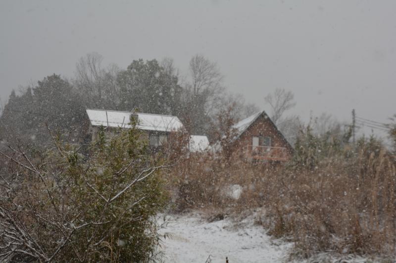 今冬一番の寒波