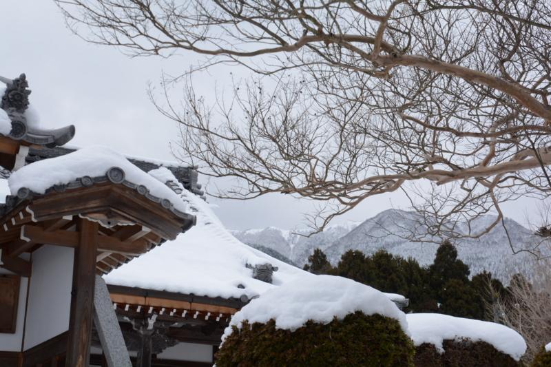 村のお寺越しの比良
