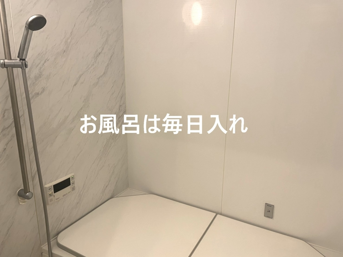 f:id:uchachan:20210124224344j:plain