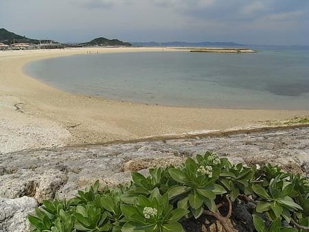 パンフで見るようなビーチ
