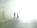 [2008関川マラソン]