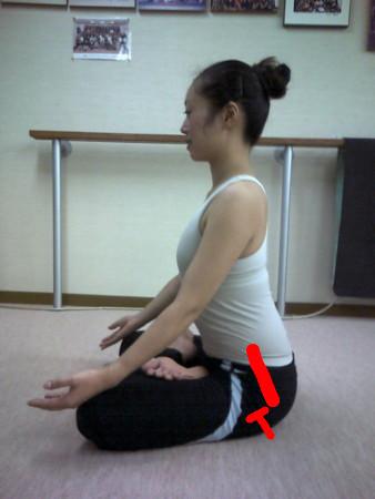 f:id:uchikoyoga:20090727233923j:image:h350