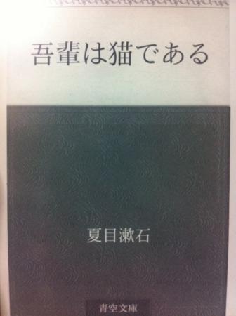 f:id:uchikoyoga:20150424205703j:image:h300:right