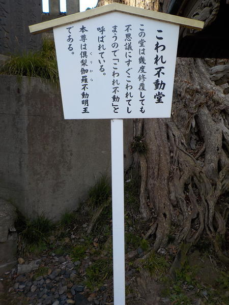 f:id:uchikoyoga:20200417090922j:plain