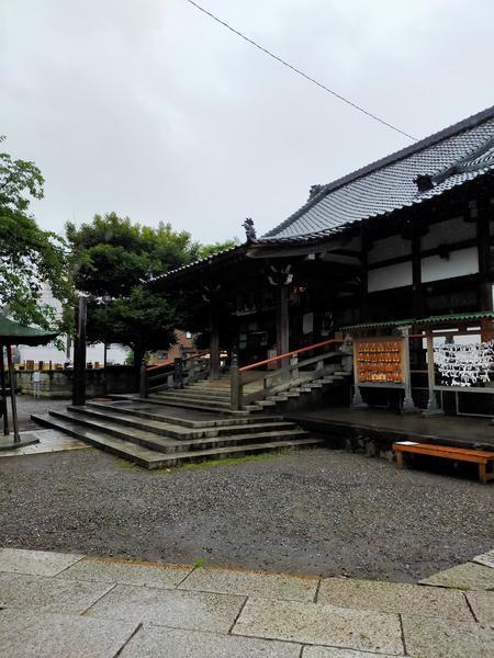f:id:uchikoyoga:20200621201934j:plain