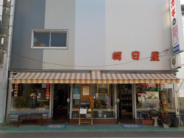f:id:uchikoyoga:20201116083202j:plain