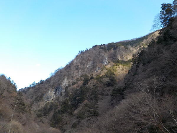 f:id:uchikoyoga:20201228211835j:plain