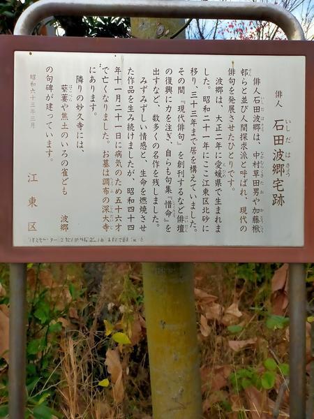 f:id:uchikoyoga:20201231200240j:plain