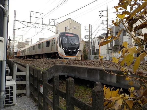 f:id:uchikoyoga:20210110162017j:plain