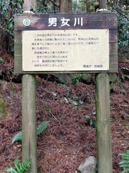 f:id:uchikoyoga:20210115194556j:plain