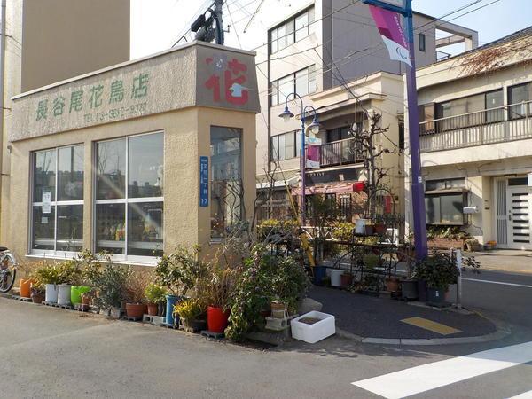 f:id:uchikoyoga:20210219200129j:plain