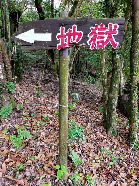 f:id:uchikoyoga:20210508215815j:plain
