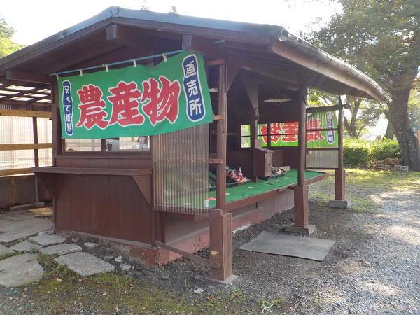 f:id:uchikoyoga:20210726085829j:plain