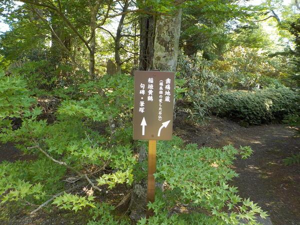 f:id:uchikoyoga:20210726091055j:plain