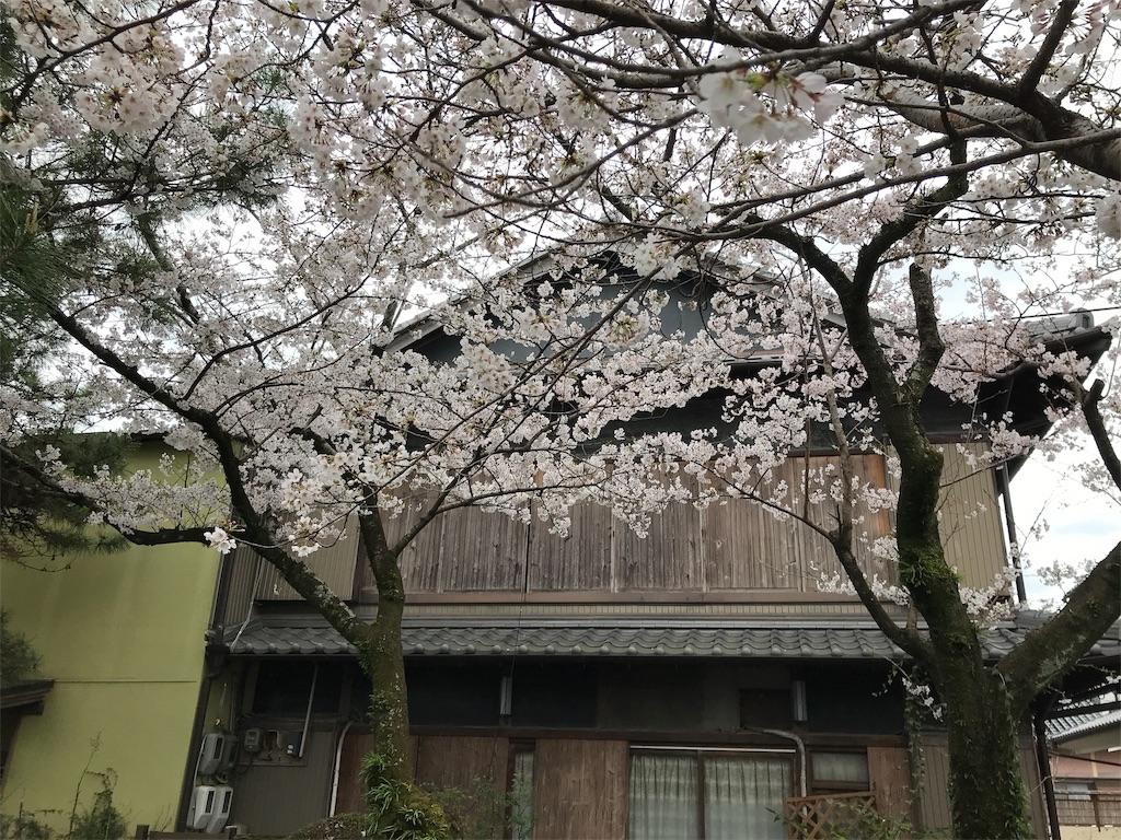 f:id:uchino_otetsudaisan:20200329150403j:image