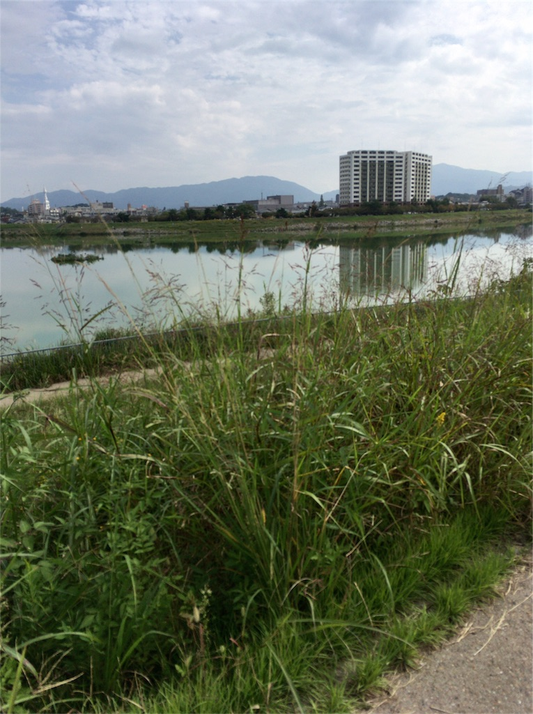 f:id:uchinoan:20161021205701j:image
