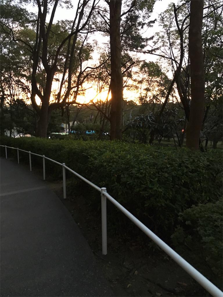 f:id:uchinoan:20170304132244j:image