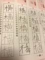 [漢字ができない][学習障害][小4]リズム漢字