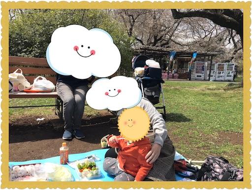 f:id:uchinokosodate:20180326091029j:image