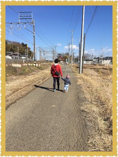 f:id:uchinokosodate:20180402225125j:image