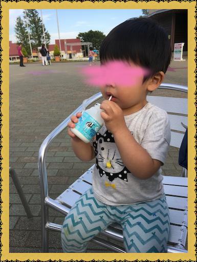 f:id:uchinokosodate:20180516102248p:image