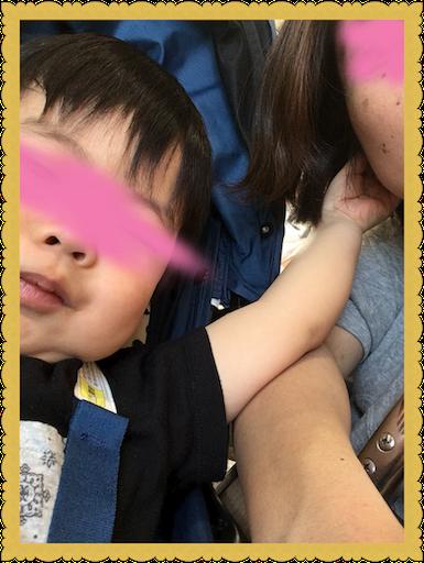 f:id:uchinokosodate:20180525181006p:image