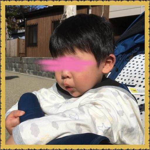 f:id:uchinokosodate:20180525183803p:image
