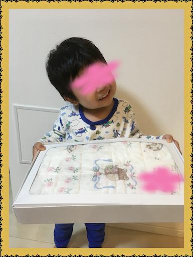 f:id:uchinokosodate:20180530143602p:image