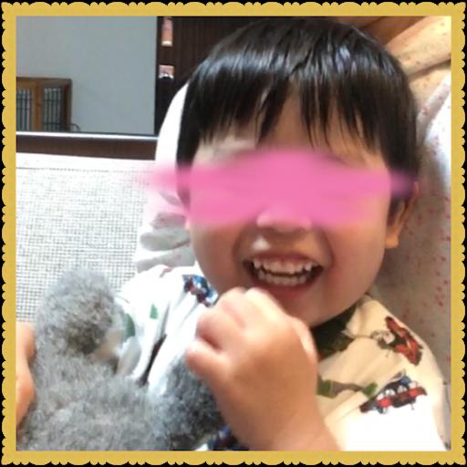 f:id:uchinokosodate:20180607115542p:image