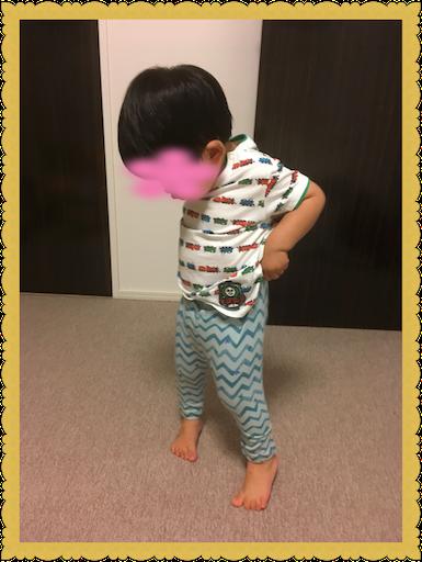 f:id:uchinokosodate:20180723131125p:image