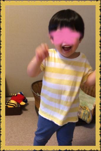 f:id:uchinokosodate:20180808092352p:image