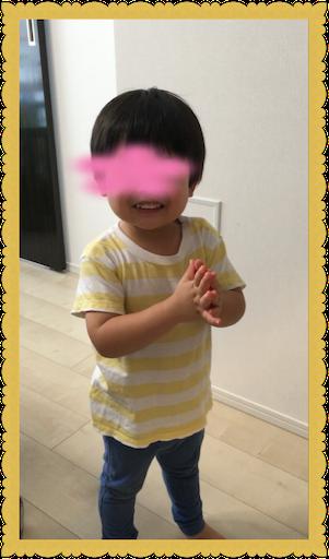 f:id:uchinokosodate:20180813165557p:image