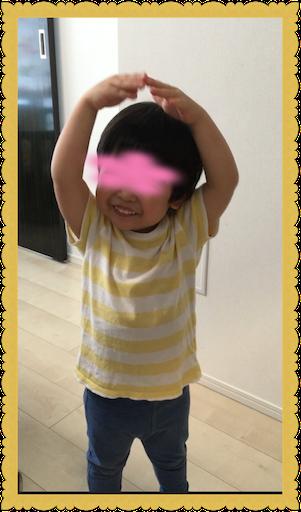 f:id:uchinokosodate:20180813165610p:image