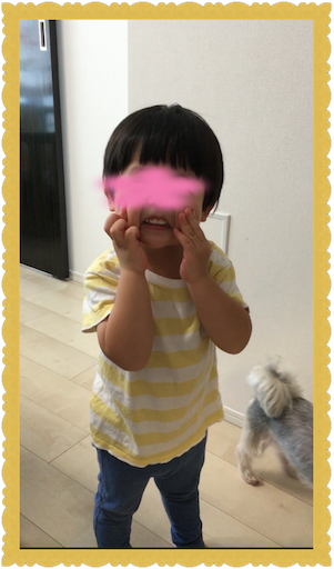 f:id:uchinokosodate:20180813165622p:image