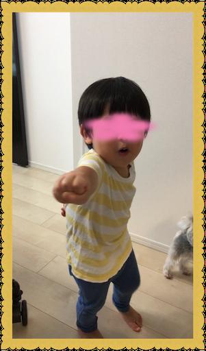 f:id:uchinokosodate:20180813165638p:image