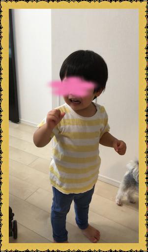 f:id:uchinokosodate:20180813165656p:image