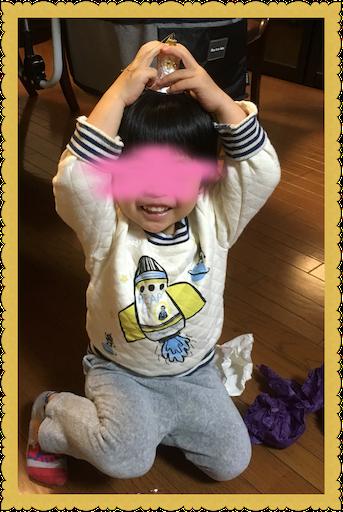 f:id:uchinokosodate:20181210110844p:image