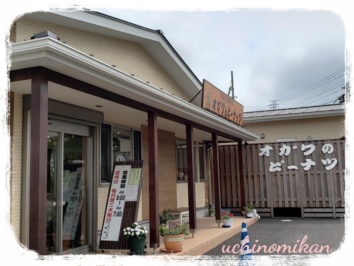 f:id:uchinomikan:20190711172412j:plain