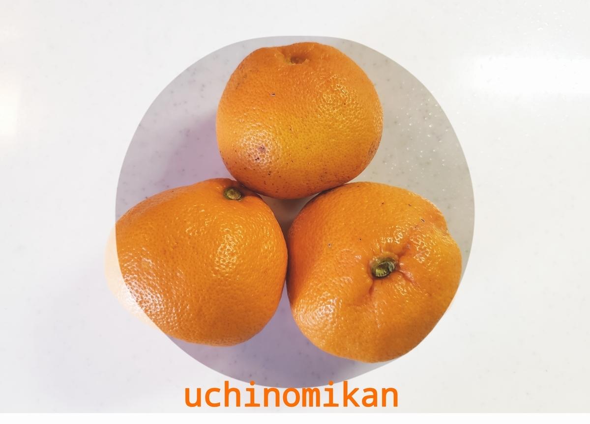 f:id:uchinomikan:20200116120051j:plain