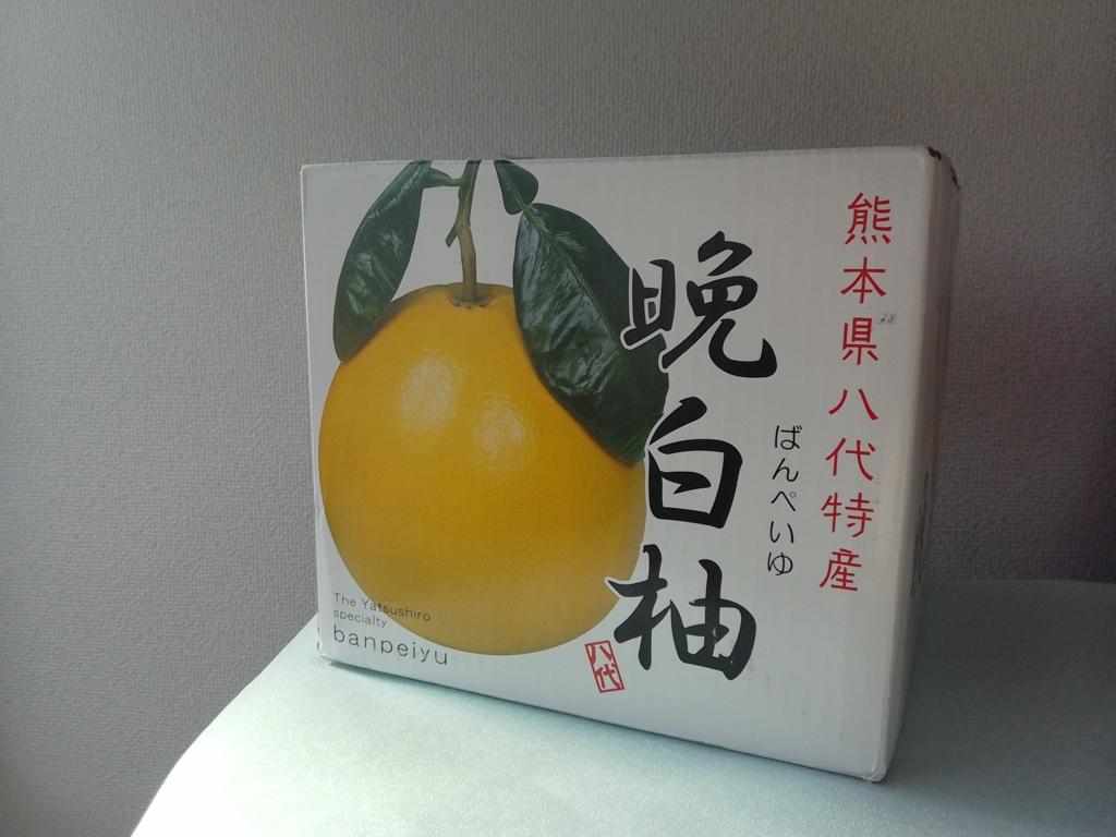 f:id:uchitomi:20170215131424j:plain
