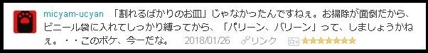 f:id:uchu5213:20180131203247j:plain