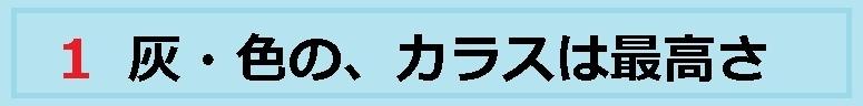 f:id:uchu5213:20180417010602j:plain