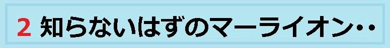 f:id:uchu5213:20180725054152j:plain