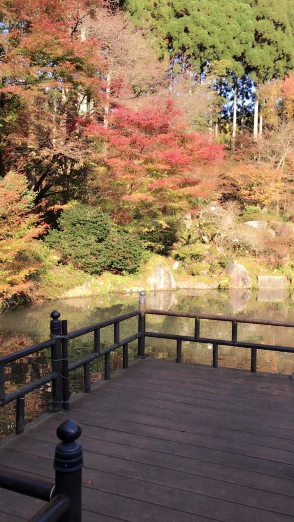 f:id:ueda-tosou:20161128084339j:plain