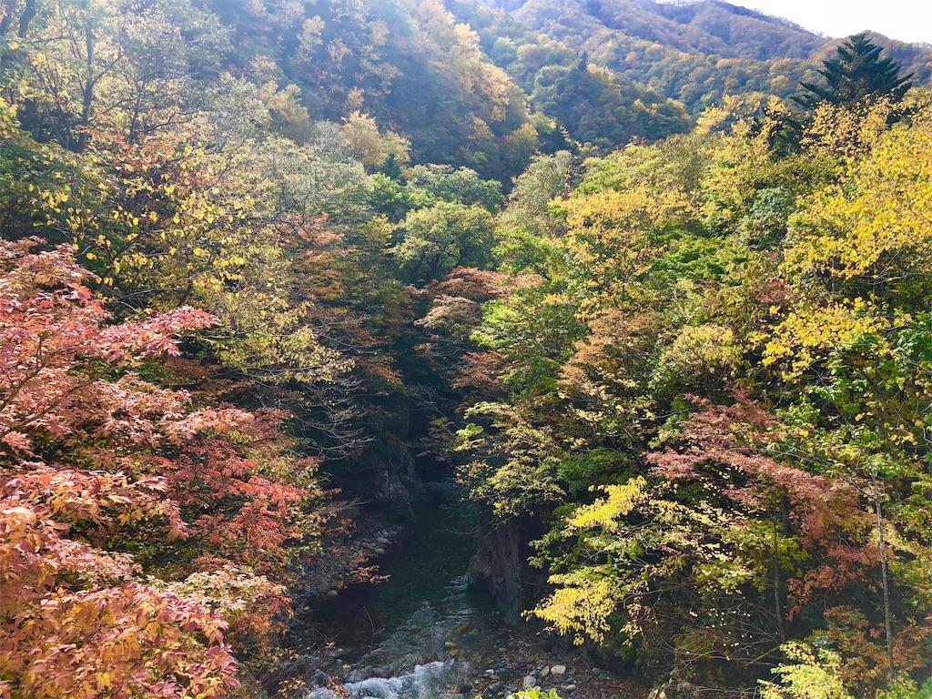 f:id:uehiro_outdoor:20181012194307j:image